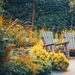 """Cancelled! Coffee and Mother Earth: """"Beautiful Autumn and Winter Gardens"""""""