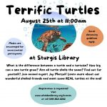 Terrific Turtles at Sturgis Library